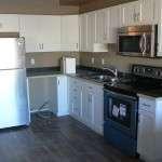 Jan 20-2 Appliances being installed